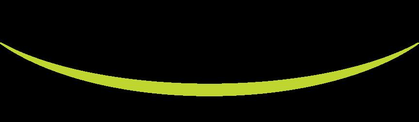 Logo - Union ZFR